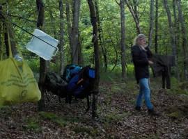 2 Tage Überleben in der Wildnis Senden