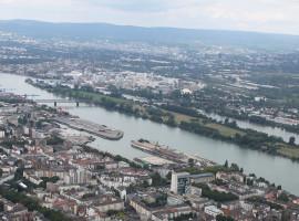50 Min. Flugzeug Rundflug Mainz für drei Personen
