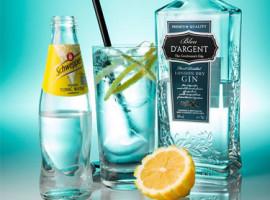 Gin-Tasting in Frankfurt-Höchst