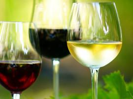 Wein-Tasting in Köln-Nippes