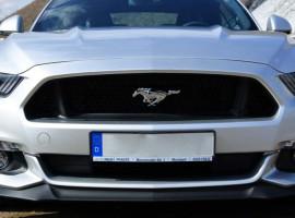 1 Tag Ford Mustang GT Premium selber fahren in Krefeld