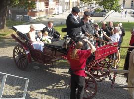 Kutschfahrt in Hochzeitskutsche (vierspännig) in Limbach-Oberfrohna