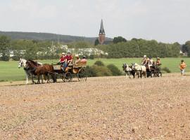1 Std. Kutschfahrt in Limbach-Oberfrohna (vierspännig)