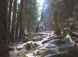 Mountainbike Tour in Schmiedefeld, Raum Erfurt in Thüringen