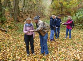 """3,5 Std. GPS-Schatzsuche """"Abenteuer in Sorbitztal"""" in Rohrbach-Sorbitztal"""