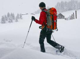 Schneeschuh Wanderung & Airboarding in Blaichach, Raum Kempten