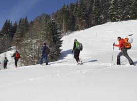 Schneeschuh Wanderung in Schneizlreuth