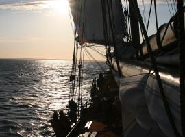 Segeln und Schlemmen auf der Ostsee Neppermin