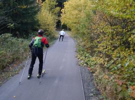 Skiroller Kurs in Klingenthal, Raum Chemnitz in Sachsen