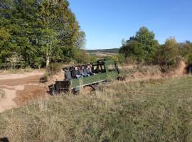 60 Min. Truck (Unimog) selber fahren in Stadtoldendorf