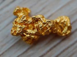Goldwaschen in Weil am Rhein
