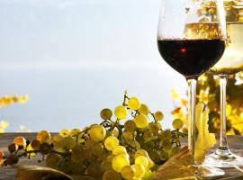Wein Krimi in Köln, NRW