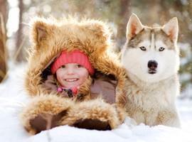 Huskies und Kids