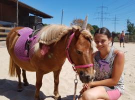 Pony Erlebnisstunden